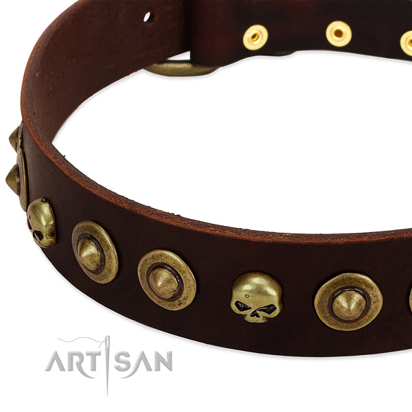 Extraordinary embellishments on natural leather collar for your dog