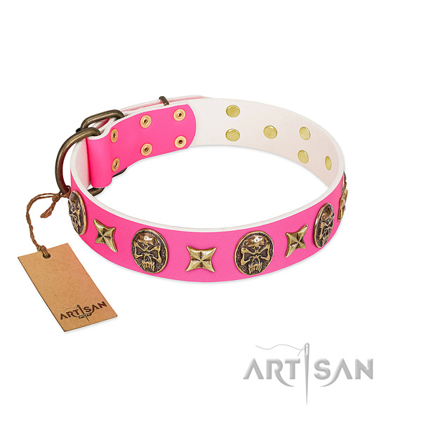 Leather dog collar with rust-proof decorations