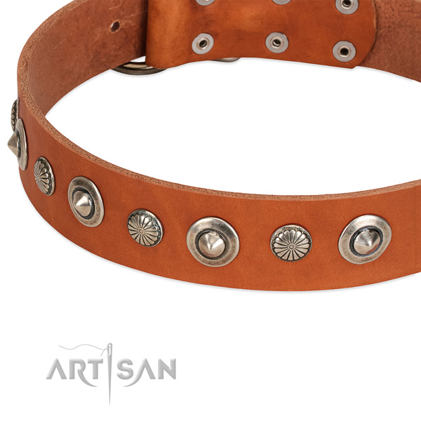 Full grain genuine leather collar with reliable D-ring for your stylish dog