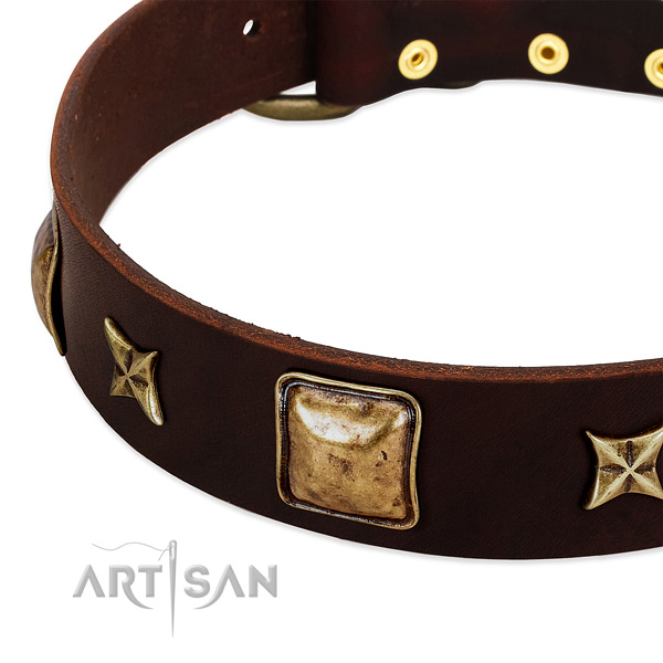 Strong studs on natural genuine leather dog collar for your doggie