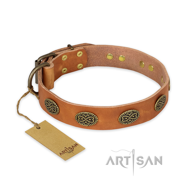 Trendy leather dog collar with durable D-ring
