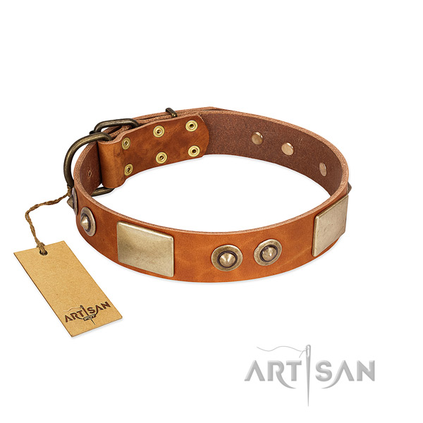 Easy wearing leather dog collar for walking your doggie