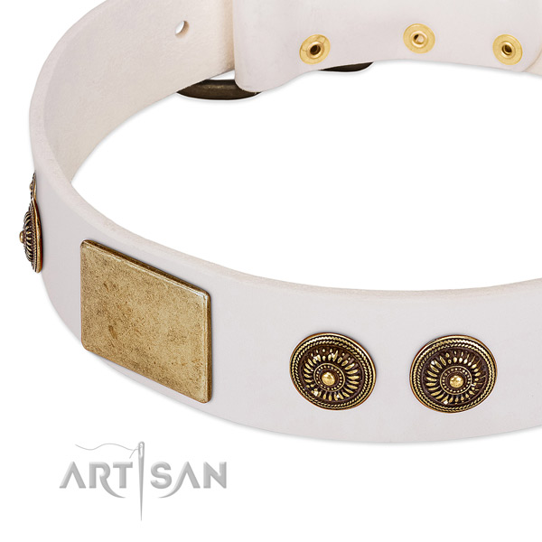 Easy to adjust dog collar crafted for your beautiful dog