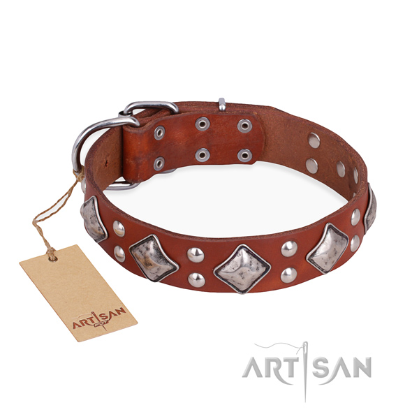 Comfortable wearing amazing dog collar with corrosion resistant traditional buckle