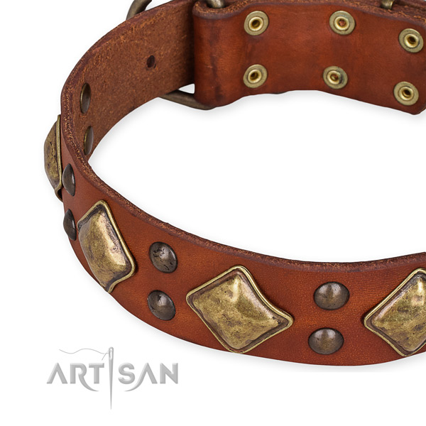 Genuine leather collar with corrosion resistant traditional buckle for your stylish dog