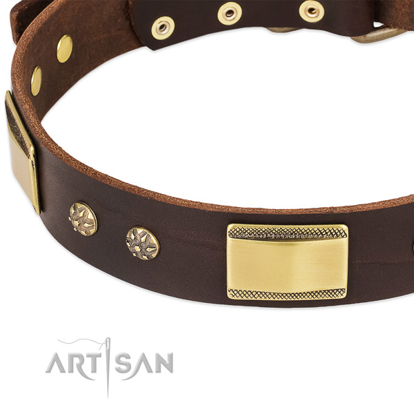 Rust resistant decorations on full grain genuine leather dog collar for your pet