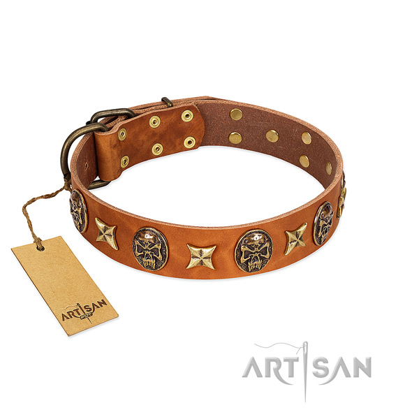 Unique full grain leather collar for your pet