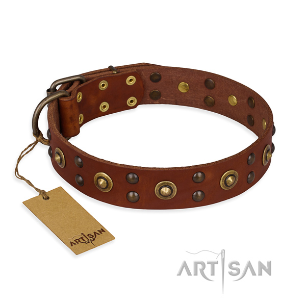 Adjustable full grain genuine leather dog collar with corrosion resistant fittings