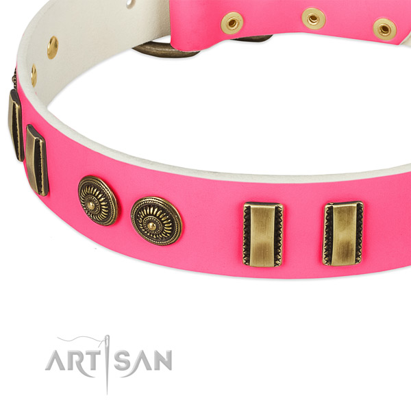 Strong decorations on genuine leather dog collar for your canine