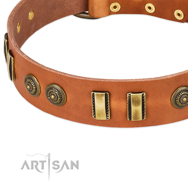 Reliable studs on leather dog collar for your dog