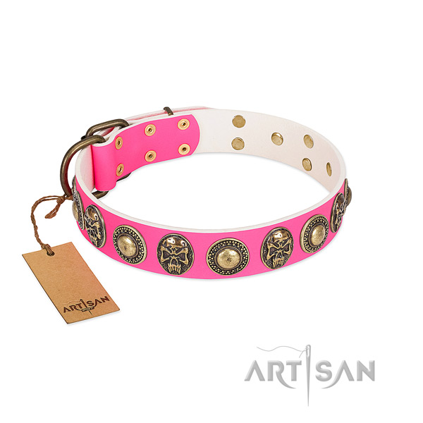 Easy wearing leather dog collar for basic training your pet