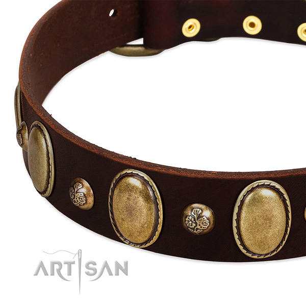 Full grain genuine leather dog collar with stunning decorations
