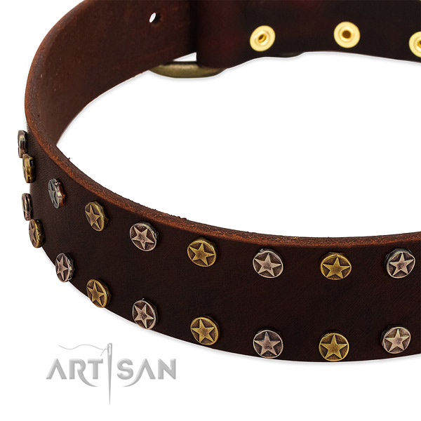 Easy wearing full grain genuine leather dog collar with remarkable adornments