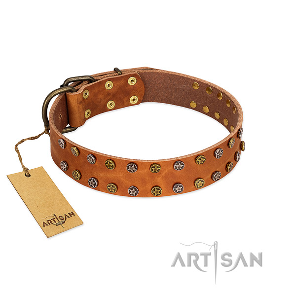 Walking gentle to touch full grain genuine leather dog collar with studs