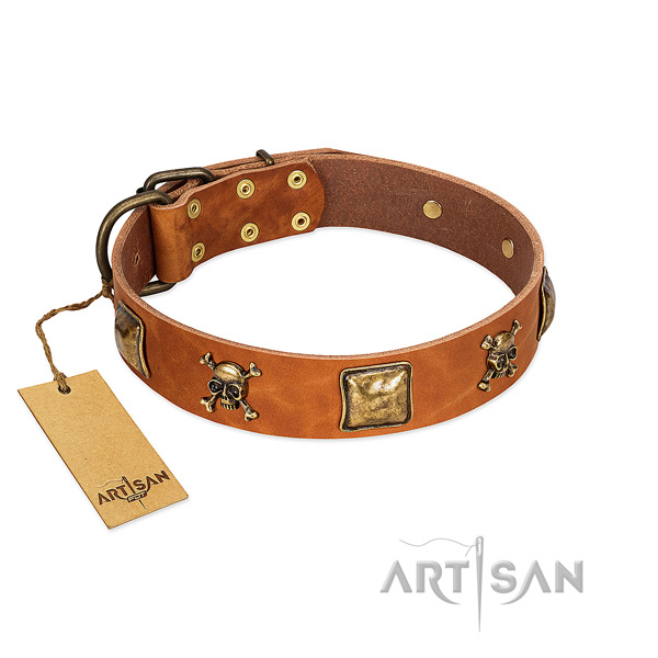 Designer natural leather dog collar with corrosion resistant studs