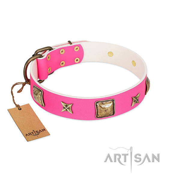 Genuine leather dog collar of soft to touch material with top notch embellishments