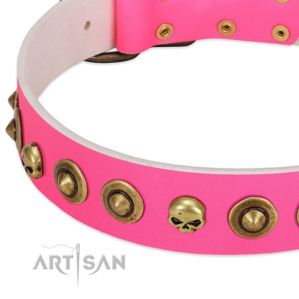 Remarkable embellishments on leather collar for your canine