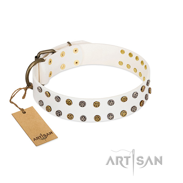 Exceptional genuine leather dog collar with durable studs