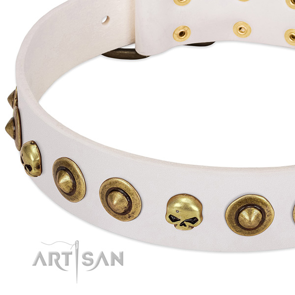 Incredible adornments on full grain natural leather collar for your pet