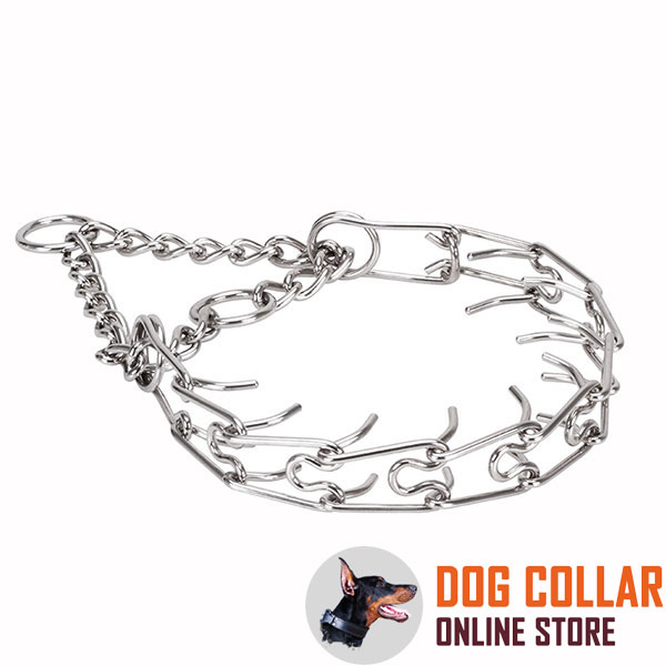 Prong collar of stainless steel for poorly behaved pets