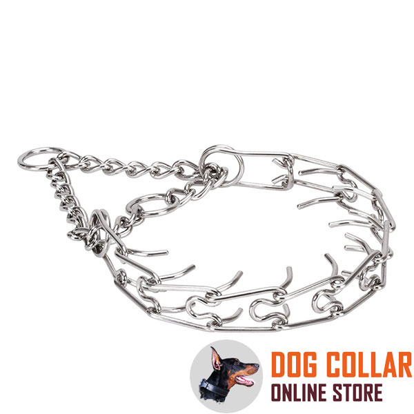 Rust resistant stainless steel pinch collar for ill behaved canines