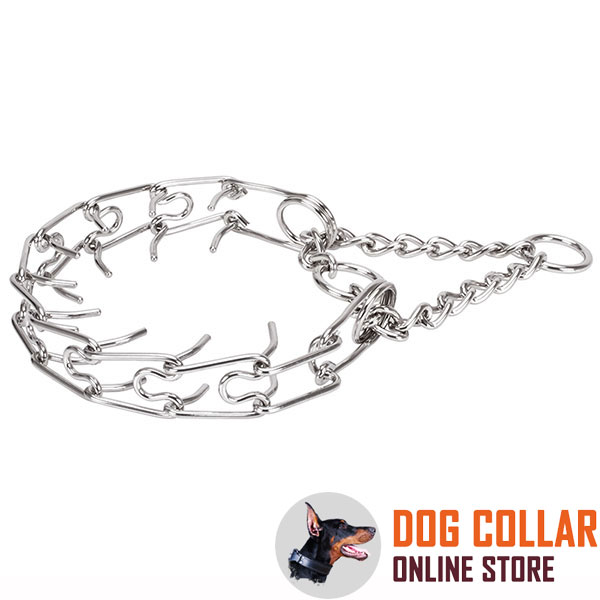 Dog prong collar of durable stainless steel for large canines