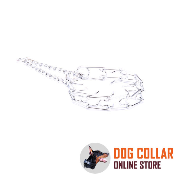 Chrome plated steel dog pinch collar for aggressive pets