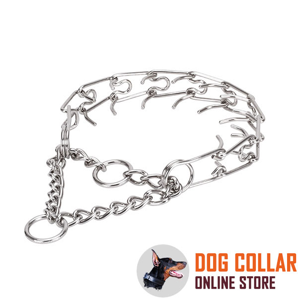 Adjustable stainless steel dog pinch collar with removable prongs for large canines