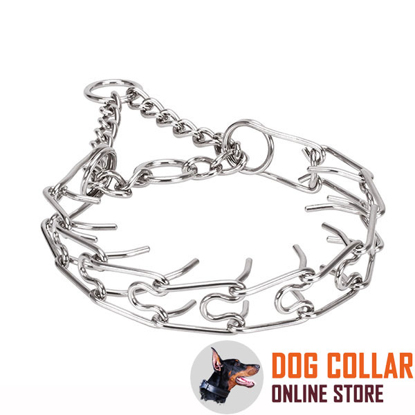 Corrosion resistant dog pinch collar with stainless steel removable links
