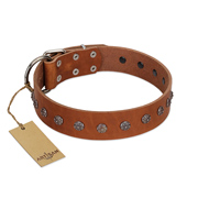 """Daintiness"" Designer Handmade FDT Artisan Tan Leather dog Collar with Silver-Like Adornment"