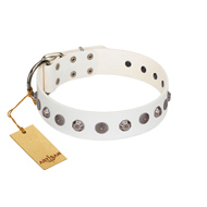 """Solar Energy"" FDT Artisan White Leather dog Collar with Silver-like Studs and Medallions"