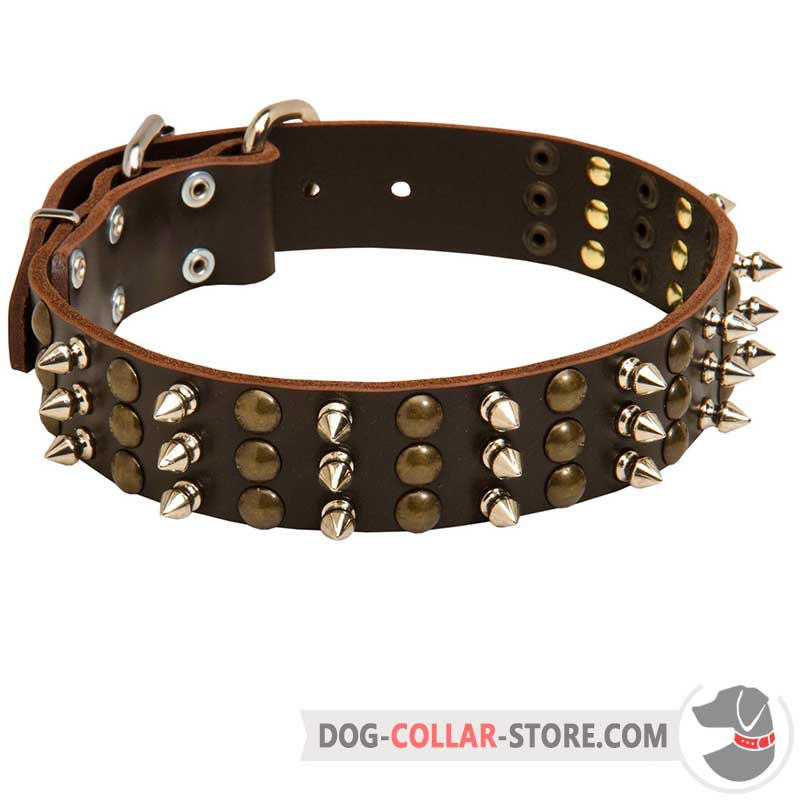 spike collar for dogs