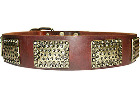 Luxury Leather Dog Collar with Large Plates