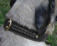 Mastiff Handcrafted Leather Dog Collar - best dog collar