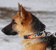 German Shepherd Hand Painted Leather Dog Collar with Red Flames