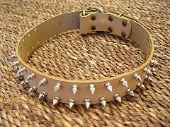 spiked dog collar for black russian terrier
